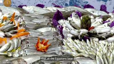 مصر تدشن أكبر مشروع للاستزراع السمكي بالشرق الأوسط