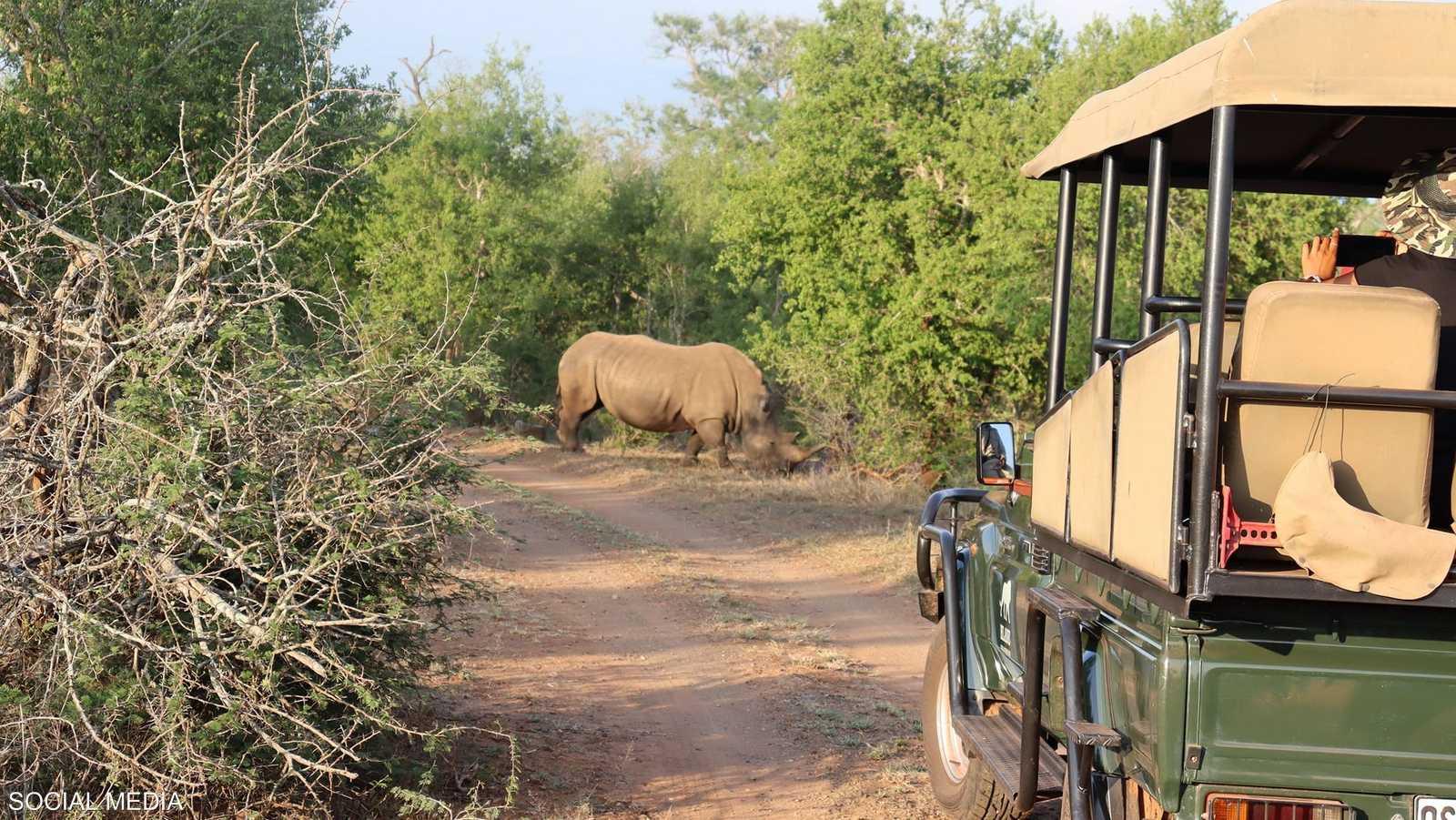 سوازيلاند موطن وحيد القرن