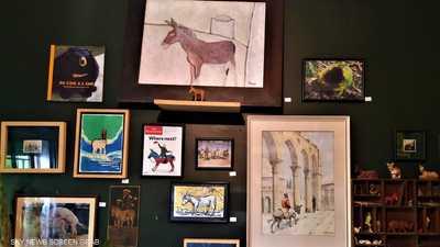 """""""متحف الحمار"""".. شاب مغربي يوثق دور الحيوانات الرمزية"""
