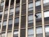 القط قفز من الطابق الخامس