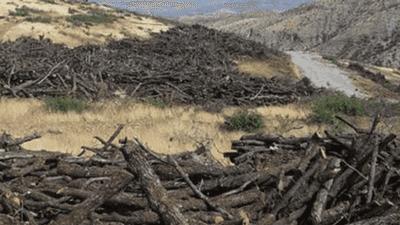 الرئيس العراقي: ممارسات تركيا جريمة بيئية