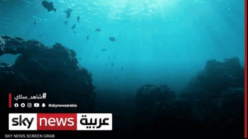 الأمم المتحدة تشدد على حماية المحيطات من التلوث