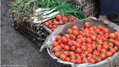 """بعد البطاطس.. ما حقيقة التخلص من محصول """"الطماطم"""" في مصر؟"""