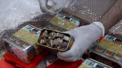 """بالفيديو.. الأمن الكويتي يضبط مخدرات داخل """"علبة حلويات"""""""