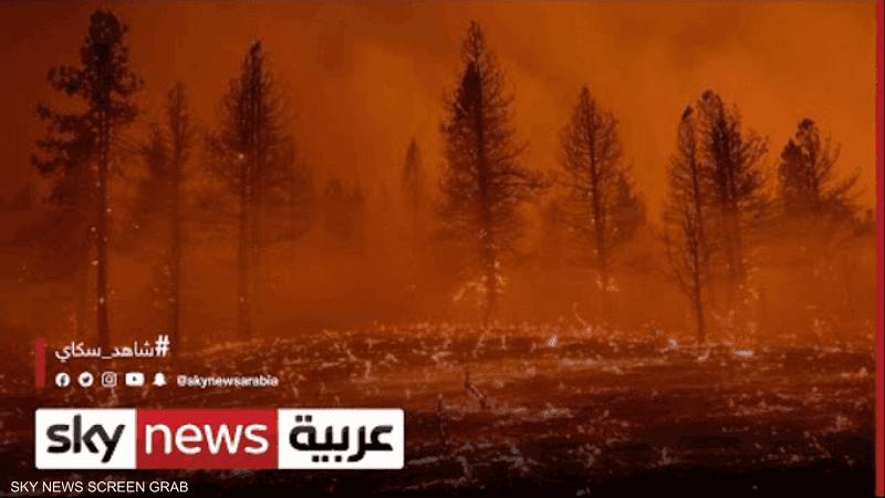 انبعاثات كربون قياسية جراء حرائق الغابات خلال الصيف