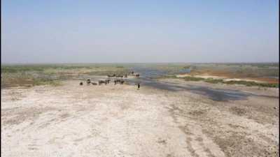 تحذير دولي.. العراق في خطر بسبب نقص المياه