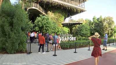 جناح سنغافورة في إكسبو يبرز الاهتمام بالثروة النباتية