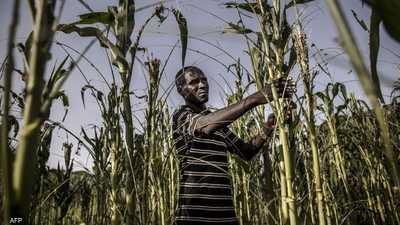قمة غلاسكو.. أمل البلدان النامية للتصدي للاحتباس الحراري