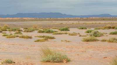 فكرة عالمية مكلفة.. إغراق الصحراء بالمياه لإصلاح كوكب الأرض