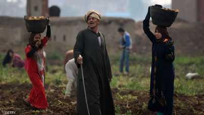الصحة العالمية: مصر في طريقها للقضاء على التهاب الكبد