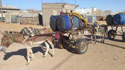"""""""مولى شاريت"""" في موريتانيا.. سقّاء على شاطئ المحيط"""
