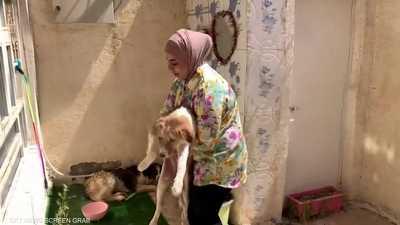 شابة عراقية تؤوي الكلاب والقطط الضالة في مدينة العمارة